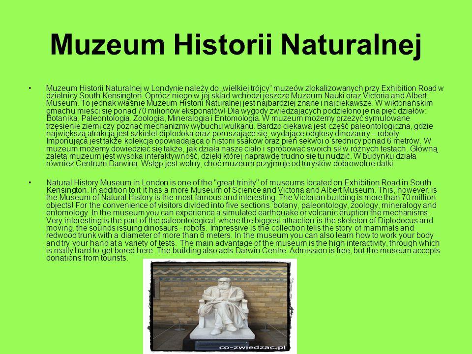 """Muzeum Historii Naturalnej Muzeum Historii Naturalnej w Londynie należy do """"wielkiej trójcy"""" muzeów zlokalizowanych przy Exhibition Road w dzielnicy S"""