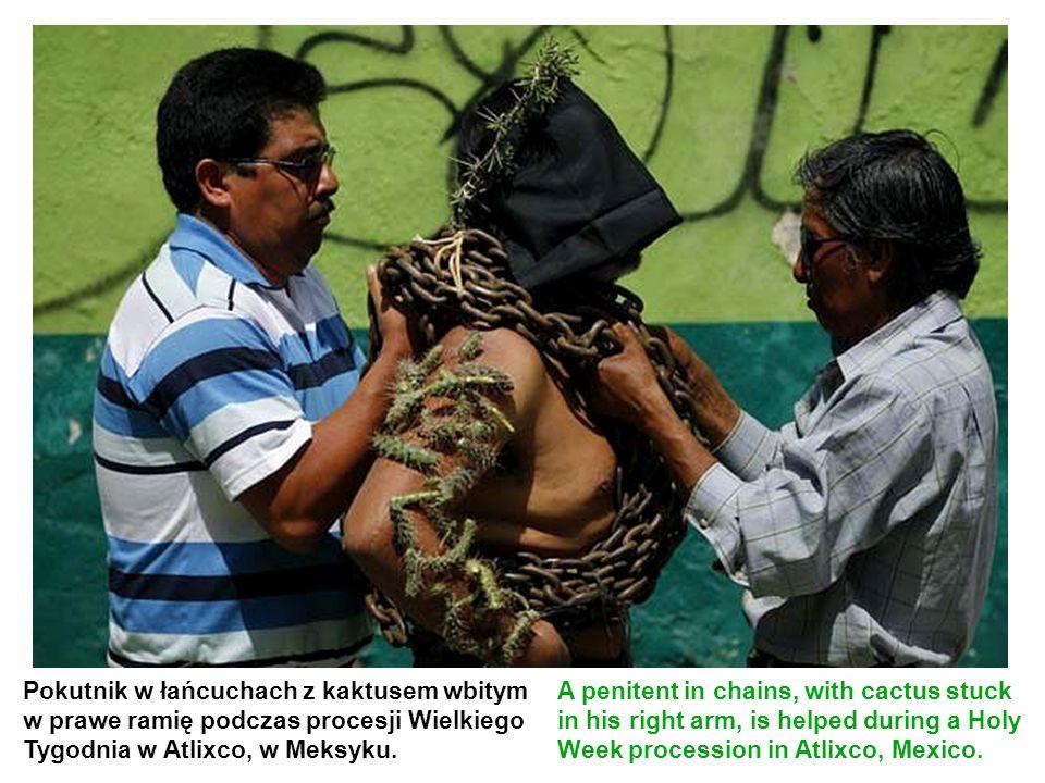 Pokutnik w łańcuchach z kaktusem wbitym w prawe ramię podczas procesji Wielkiego Tygodnia w Atlixco, w Meksyku. A penitent in chains, with cactus stuc