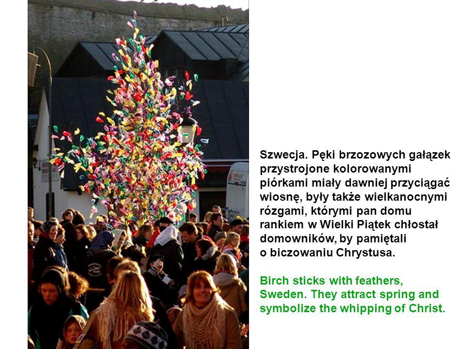 Szwecja. Pęki brzozowych gałązek przystrojone kolorowanymi piórkami miały dawniej przyciągać wiosnę, były także wielkanocnymi rózgami, którymi pan dom
