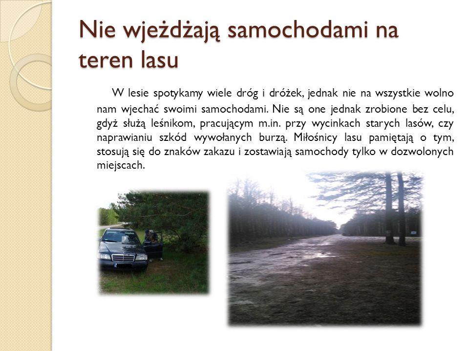 Nie wjeżdżają samochodami na teren lasu W lesie spotykamy wiele dróg i dróżek, jednak nie na wszystkie wolno nam wjechać swoimi samochodami. Nie są on