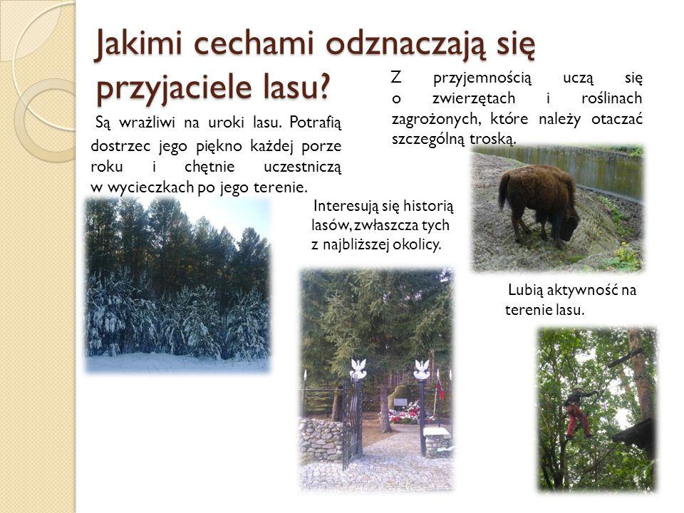 Jakimi cechami odznaczają się przyjaciele lasu? Są wrażliwi na uroki lasu. Potrafią dostrzec jego piękno każdej porze roku i chętnie uczestniczą w wyc