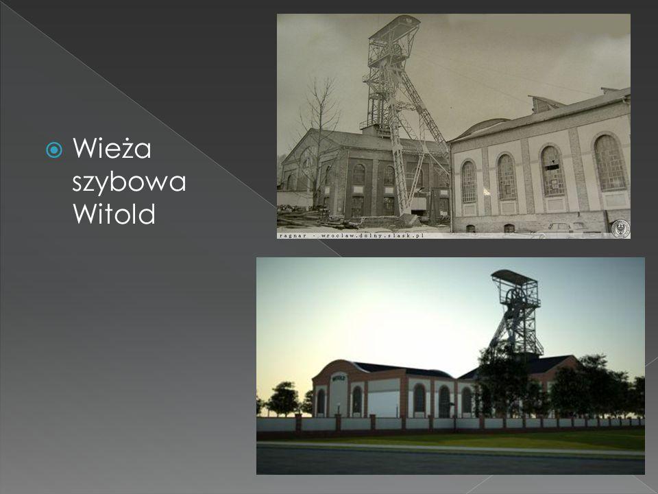  Wieża szybowa Witold