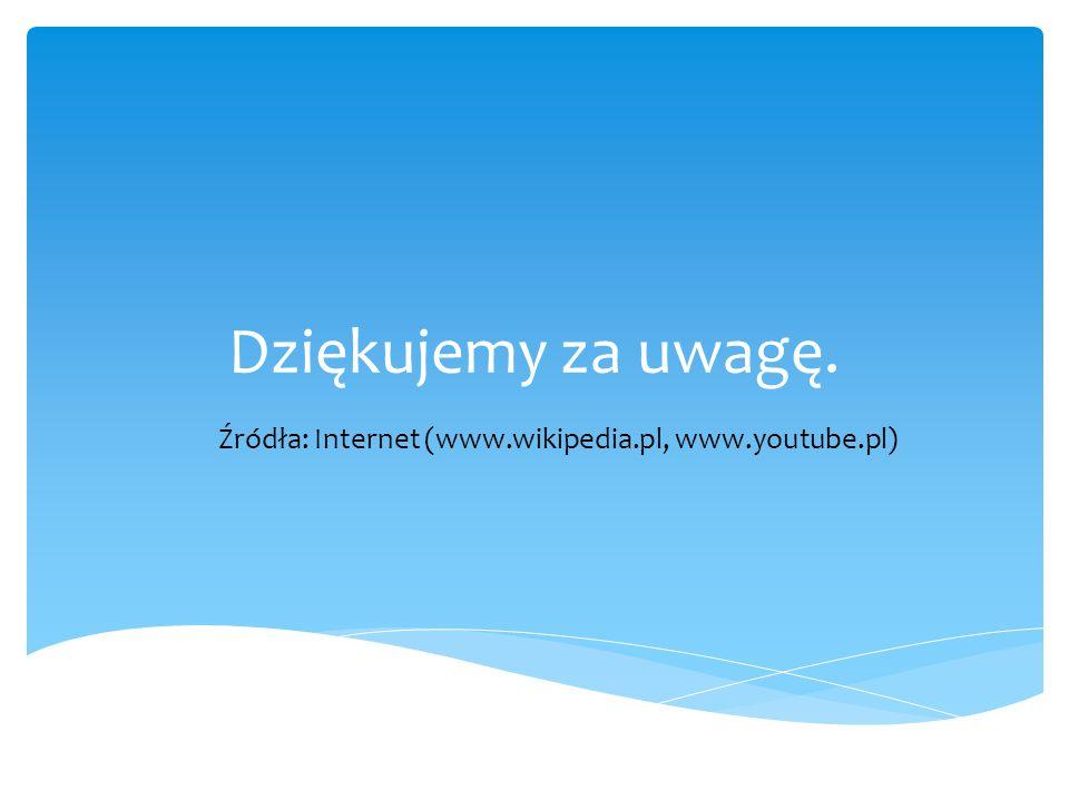 Dziękujemy za uwagę. Źródła: Internet (www.wikipedia.pl, www.youtube.pl)