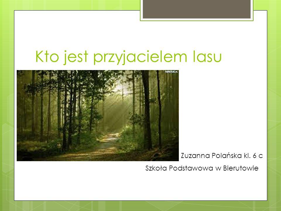 Kto jest przyjacielem lasu Zuzanna Polańska kl. 6 c Szkoła Podstawowa w Bierutowie