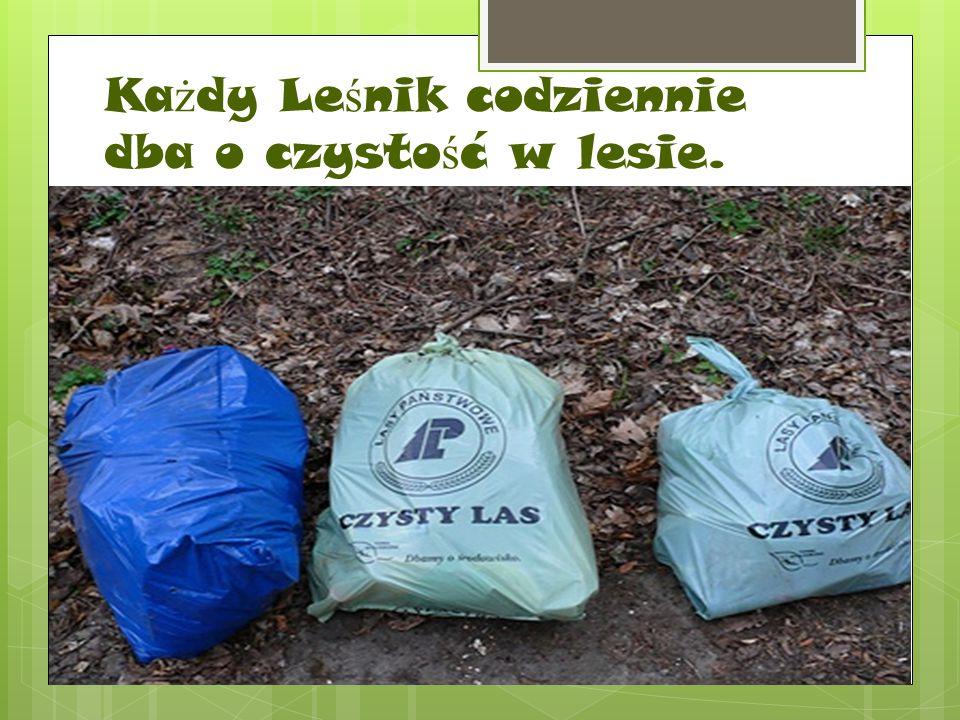 Ka ż dy Le ś nik codziennie dba o czysto ś ć w lesie.