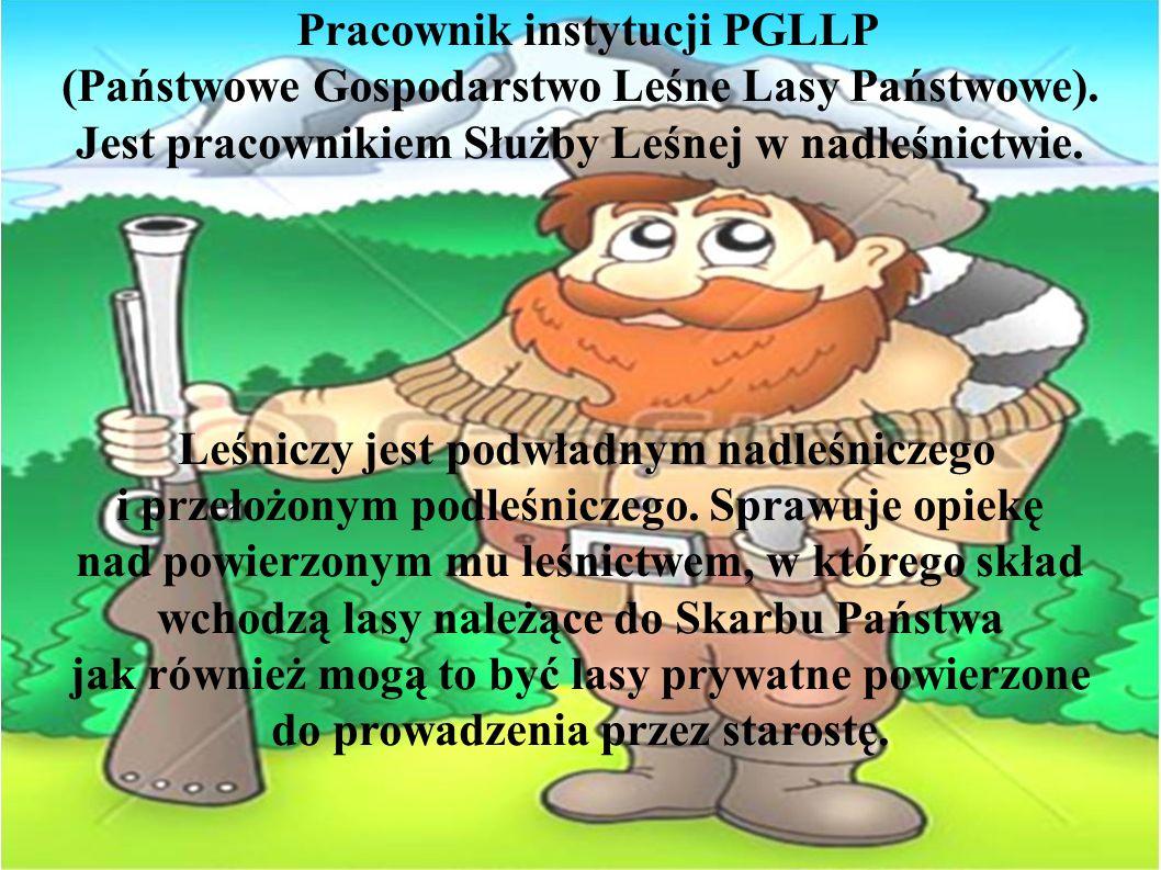 Pracownik instytucji PGLLP (Państwowe Gospodarstwo Leśne Lasy Państwowe). Jest pracownikiem Służby Leśnej w nadleśnictwie. Leśniczy jest podwładnym na