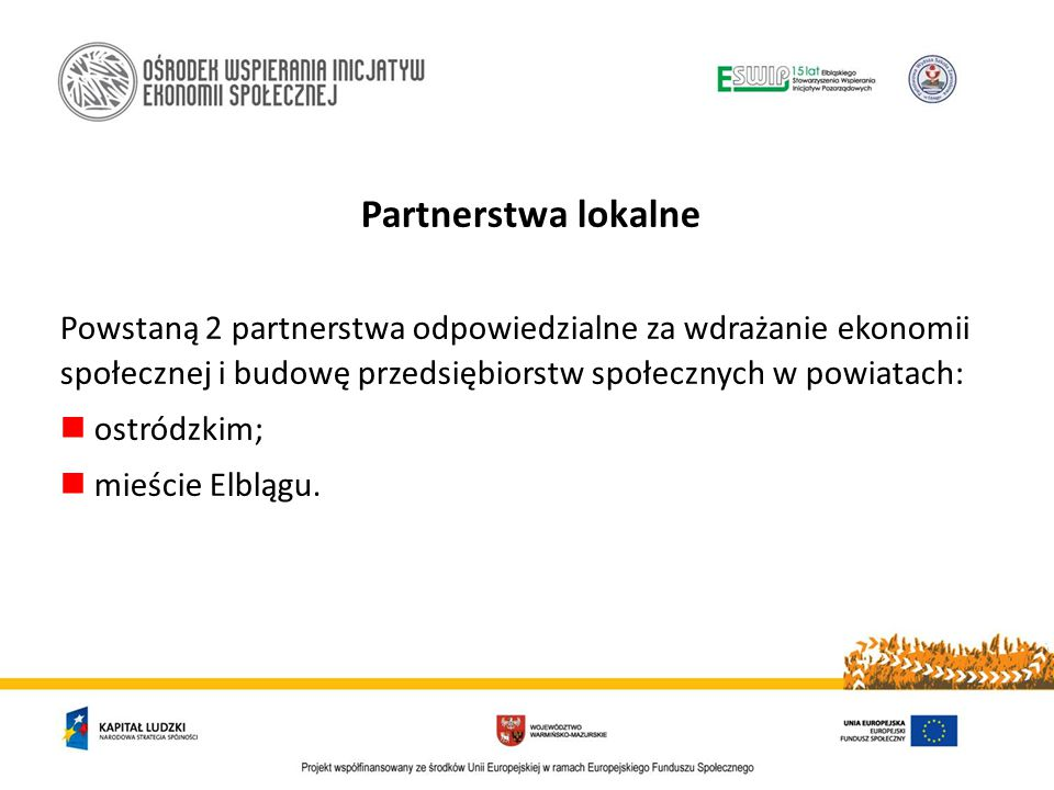 Partnerstwa lokalne Powstaną 2 partnerstwa odpowiedzialne za wdrażanie ekonomii społecznej i budowę przedsiębiorstw społecznych w powiatach: ostródzkim; mieście Elblągu.