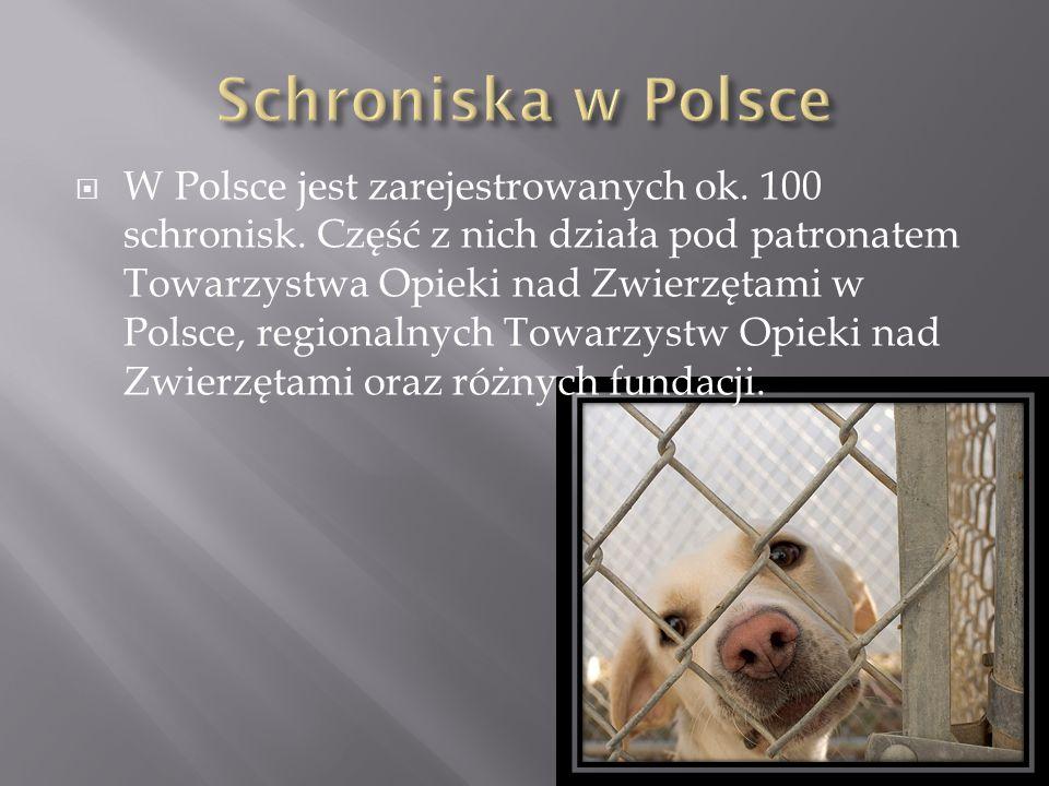  W Polsce jest zarejestrowanych ok. 100 schronisk. Część z nich działa pod patronatem Towarzystwa Opieki nad Zwierzętami w Polsce, regionalnych Towar