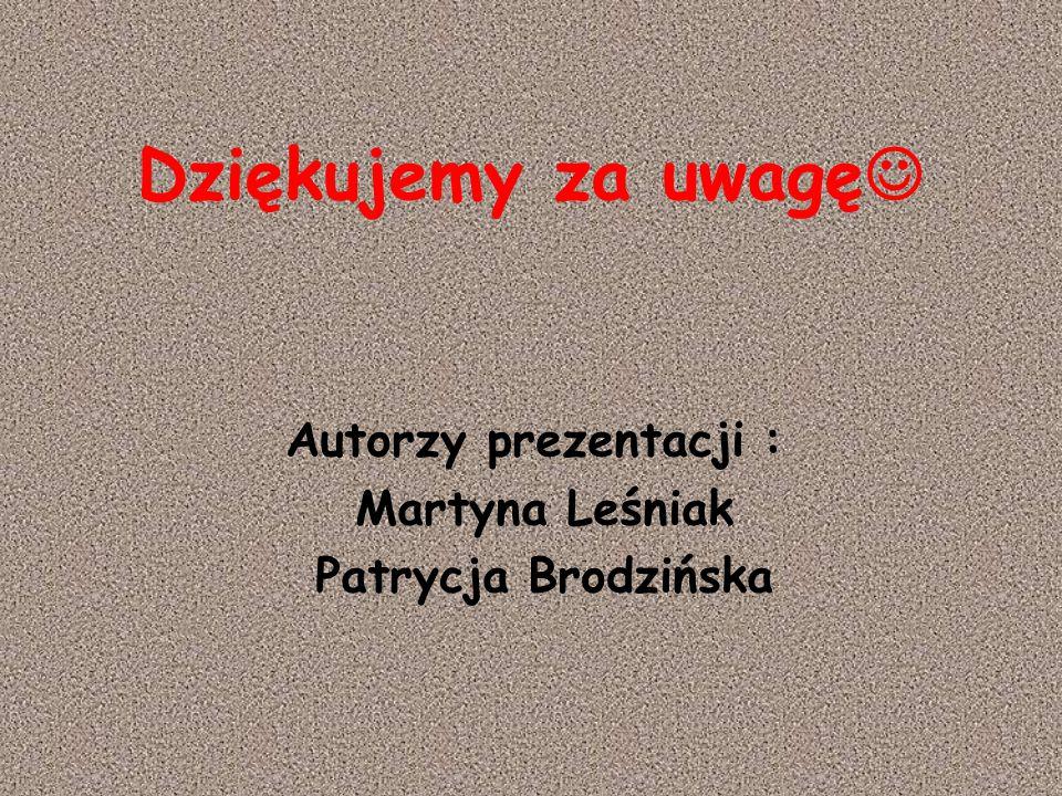 Dziękujemy za uwagę Autorzy prezentacji : Martyna Leśniak Patrycja Brodzińska