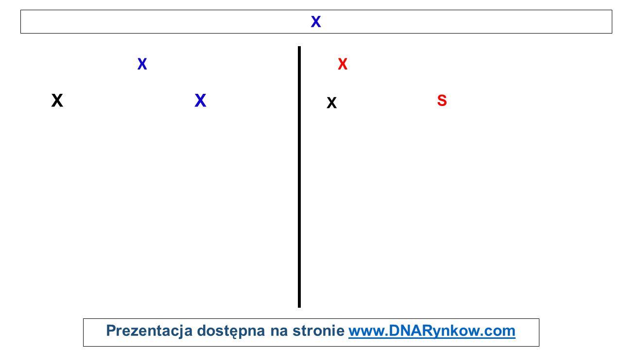 Prezentacja dostępna na stronie www.DNARynkow.comwww.DNARynkow.com X XX XX S X