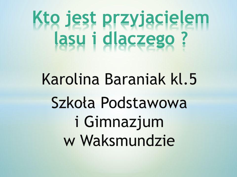 Karolina Baraniak kl.5 Szkoła Podstawowa i Gimnazjum w Waksmundzie