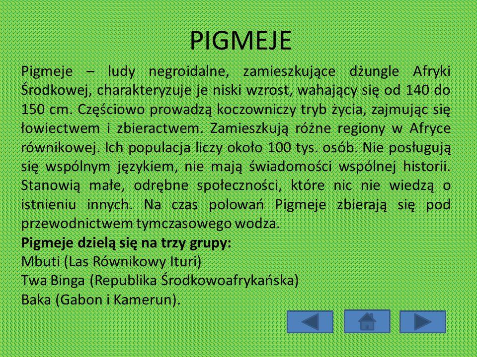 PIGMEJE Pigmeje – ludy negroidalne, zamieszkujące dżungle Afryki Środkowej, charakteryzuje je niski wzrost, wahający się od 140 do 150 cm. Częściowo p