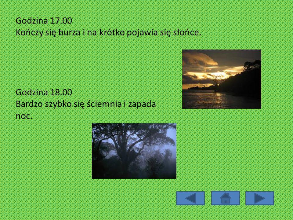 Godzina 17.00 Kończy się burza i na krótko pojawia się słońce. Godzina 18.00 Bardzo szybko się ściemnia i zapada noc.