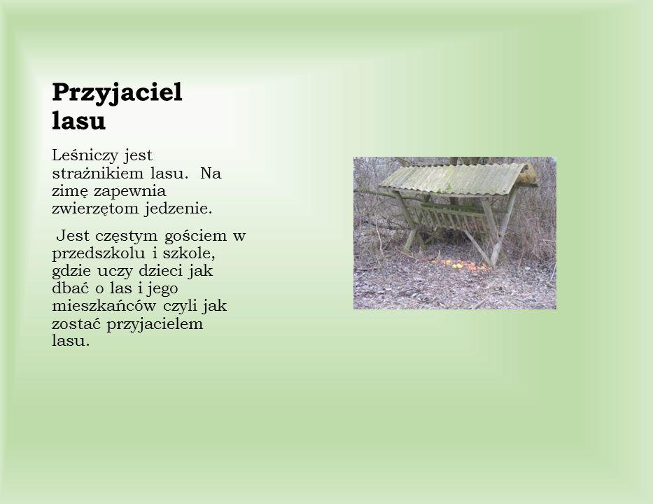 Leśniczy jest strażnikiem lasu. Na zimę zapewnia zwierzętom jedzenie. Jest częstym gościem w przedszkolu i szkole, gdzie uczy dzieci jak dbać o las i