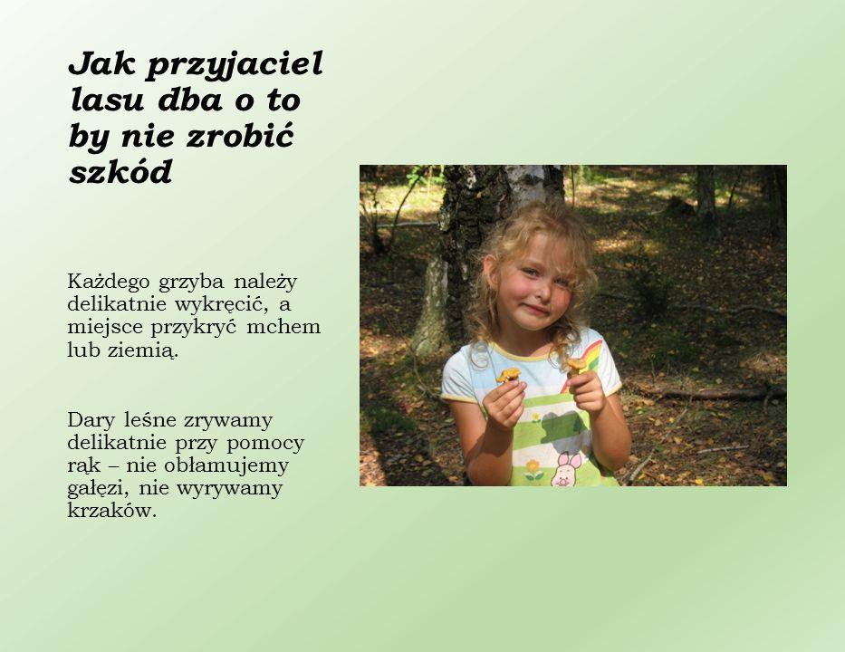 Każdy przyjaciel lasu wie, że zbieranie makulatury jest bardzo ważne.
