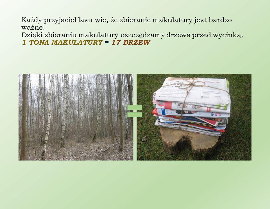 Każdy przyjaciel lasu wie, że zbieranie makulatury jest bardzo ważne. Dzięki zbieraniu makulatury oszczędzamy drzewa przed wycinką. 1 TONA MAKULATURY
