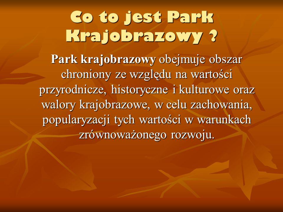 Co to jest Park Krajobrazowy ? Park krajobrazowy obejmuje obszar chroniony ze względu na wartości przyrodnicze, historyczne i kulturowe oraz walory kr