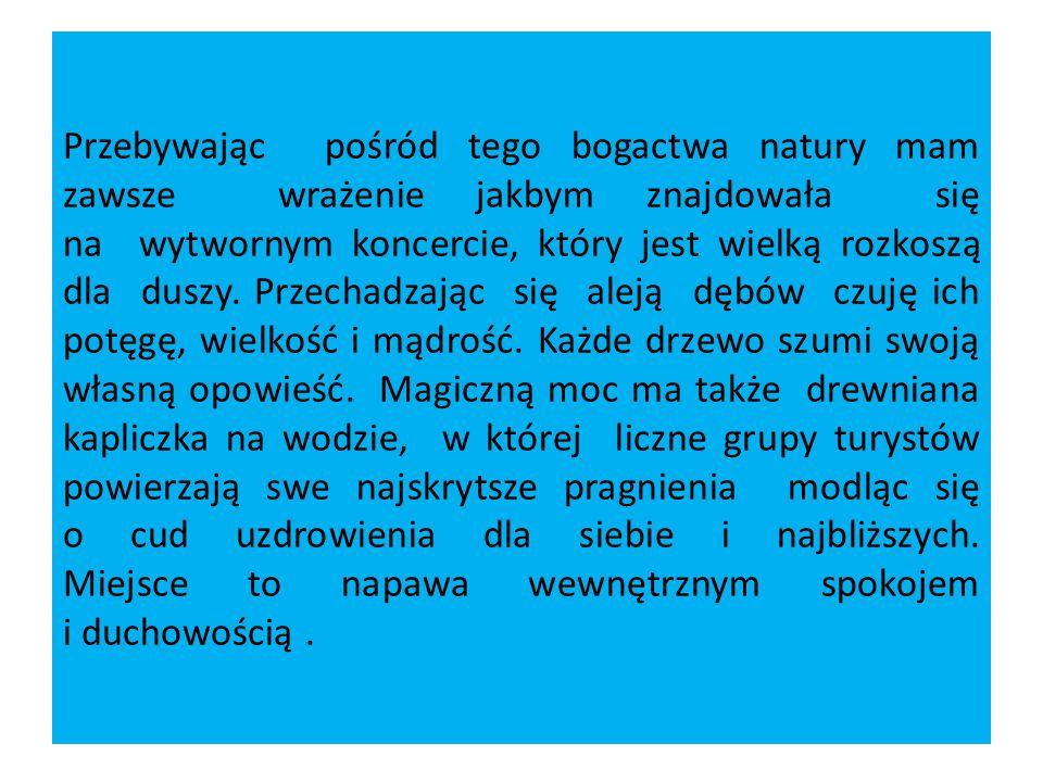 """""""Szemranie źródełka to także okazja do wysłuchania swoistej pieśni a może nawet legendy."""