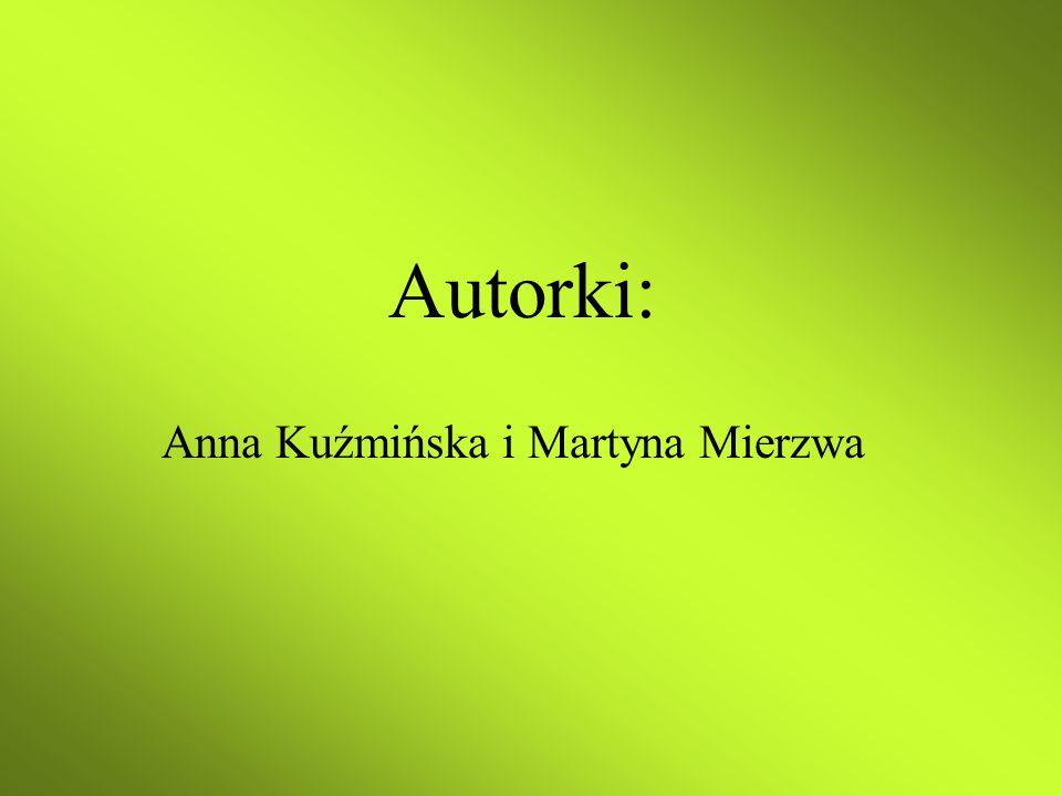 Autorki: Anna Kuźmińska i Martyna Mierzwa