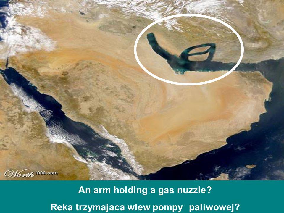 An arm holding a gas nuzzle? Reka trzymajaca wlew pompy paliwowej?