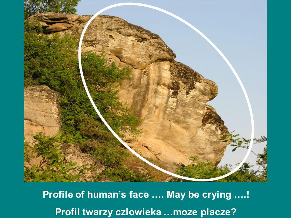Profile of human's face …. May be crying ….! Profil twarzy czlowieka …moze placze?