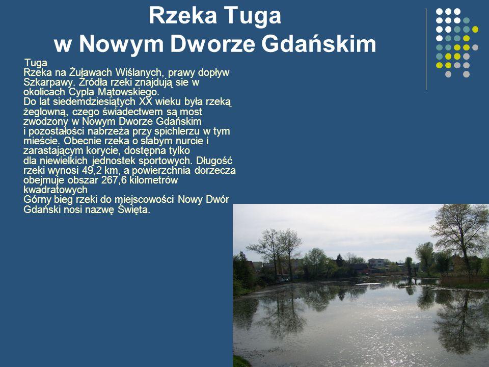 Rzeka Tuga w Nowym Dworze Gdańskim Tuga Rzeka na Żuławach Wiślanych, prawy dopływ Szkarpawy. Źródła rzeki znajdują sie w okolicach Cypla Mątowskiego.