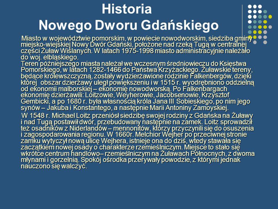 Historia Nowego Dworu Gdańskiego Miasto w województwie pomorskim, w powiecie nowodworskim, siedziba gminy miejsko-wiejskiej Nowy Dwór Gdański, położone nad rzeką Tugą w centralnej części Żuław Wiślanych.