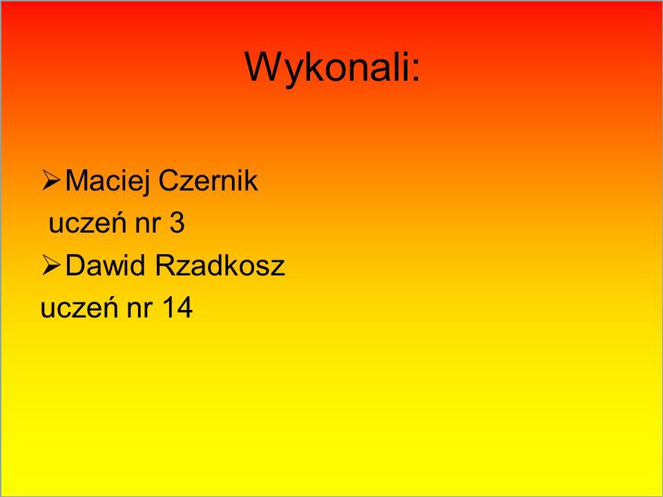 Wykonali:  Maciej Czernik uczeń nr 3  Dawid Rzadkosz uczeń nr 14