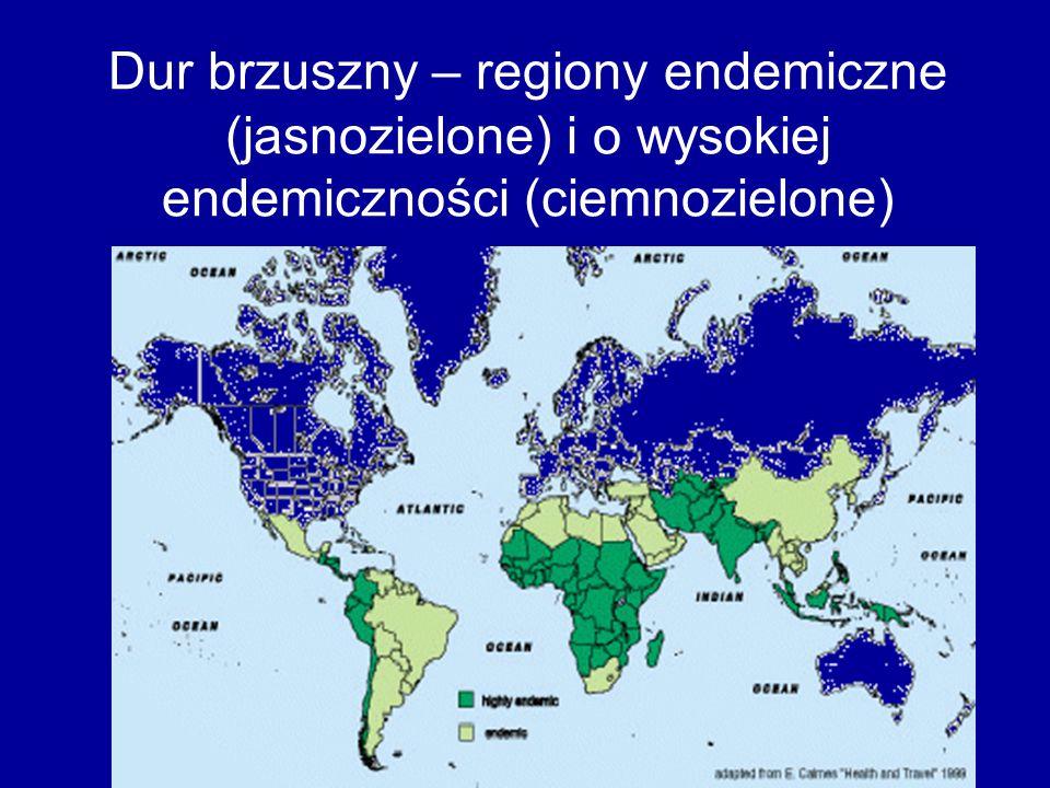 Dur brzuszny – regiony endemiczne (jasnozielone) i o wysokiej endemiczności (ciemnozielone)
