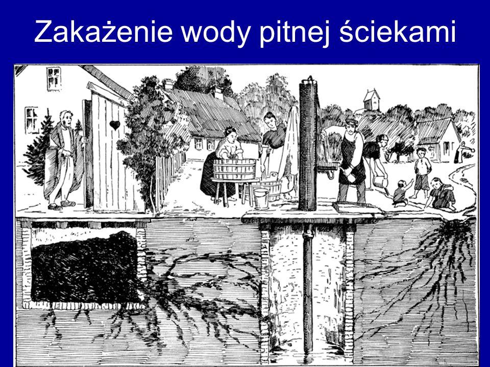 Zakażenie wody pitnej ściekami