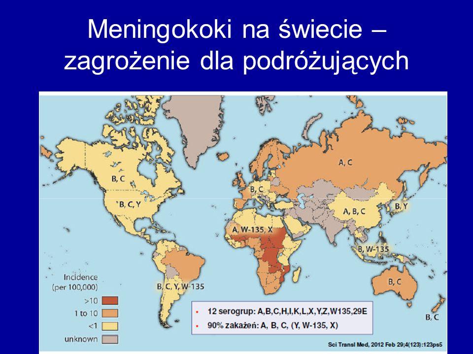 Meningokoki na świecie – zagrożenie dla podróżujących