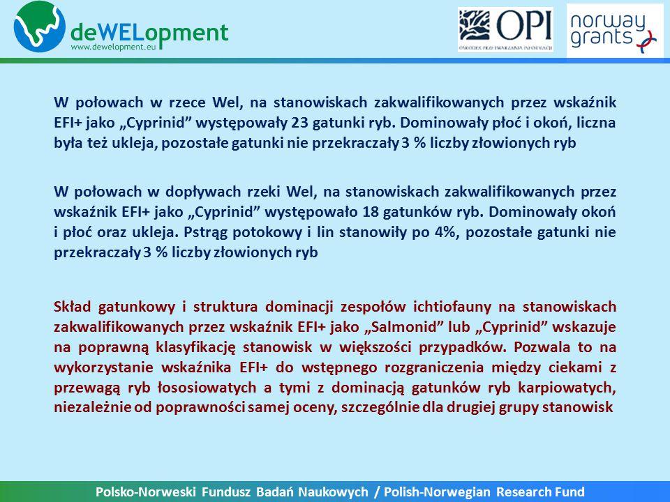 """Polsko-Norweski Fundusz Badań Naukowych / Polish-Norwegian Research Fund W połowach w rzece Wel, na stanowiskach zakwalifikowanych przez wskaźnik EFI+ jako """"Cyprinid występowały 23 gatunki ryb."""