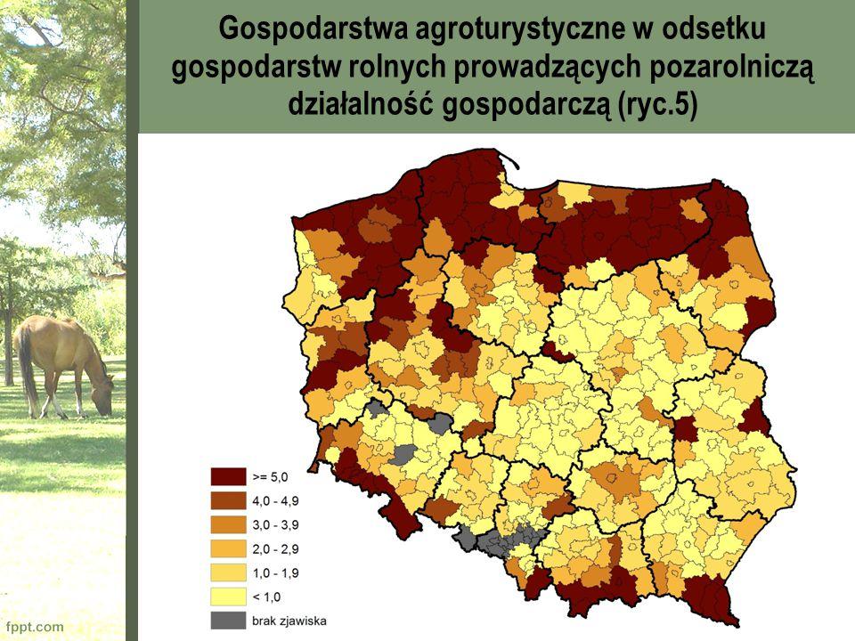 Gospodarstwa agroturystyczne w odsetku gospodarstw rolnych prowadzących pozarolniczą działalność gospodarczą (ryc.5)