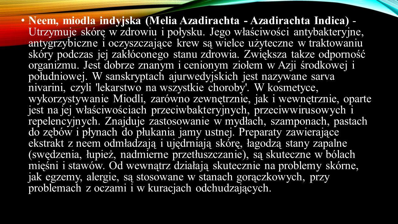 Neem, miodla indyjska (Melia Azadirachta - Azadirachta Indica) - Utrzymuje skórę w zdrowiu i połysku. Jego właściwości antybakteryjne, antygrzybiczne