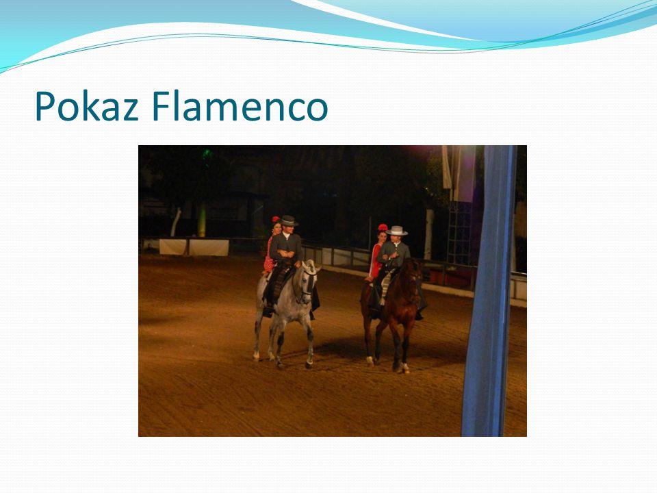 Pokaz Flamenco