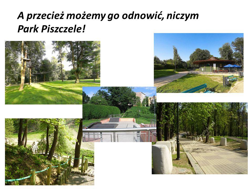 A przecież możemy go odnowić, niczym Park Piszczele!