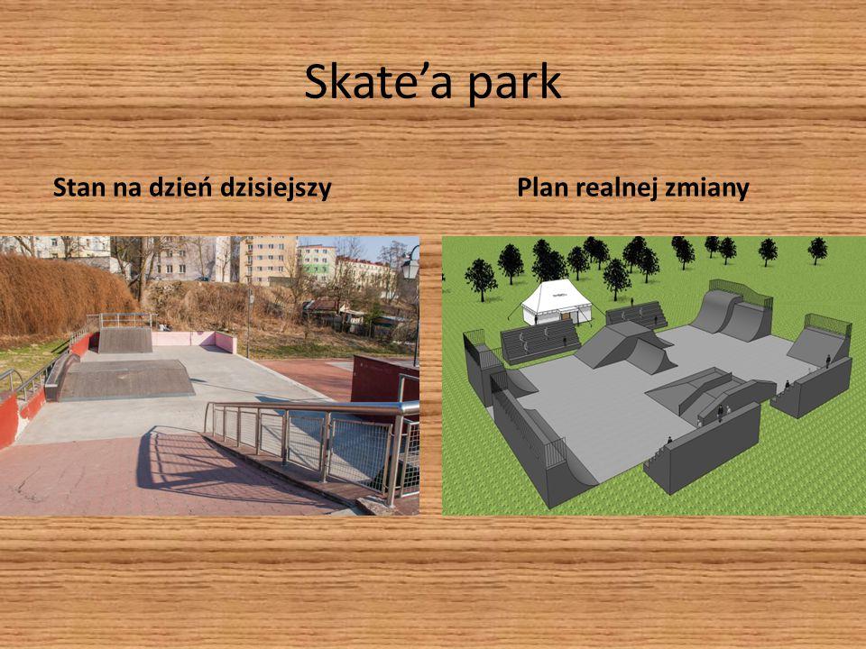 Skate'a park Stan na dzień dzisiejszyPlan realnej zmiany