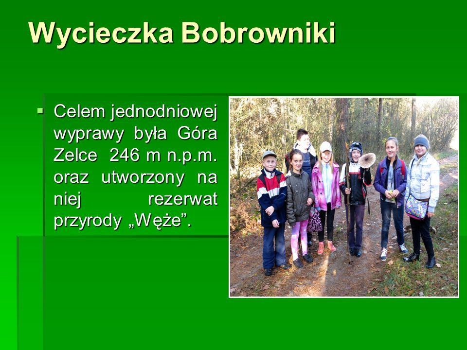 """Wycieczka Bobrowniki  Celem jednodniowej wyprawy była Góra Zelce 246 m n.p.m. oraz utworzony na niej rezerwat przyrody """"Węże""""."""