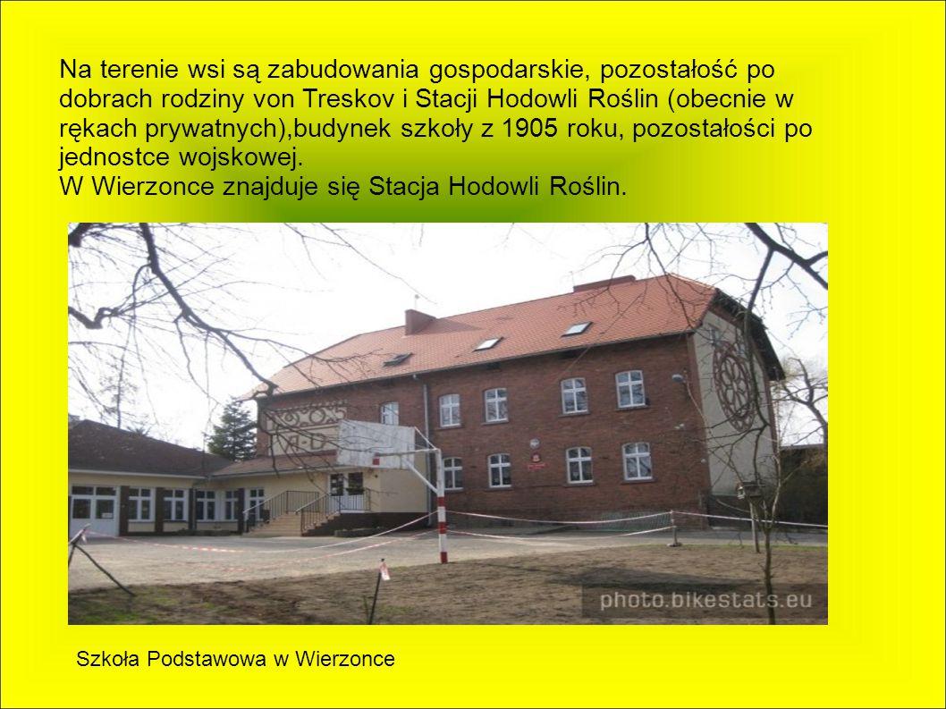 Wierzonka Jest to wieś w Polsce położona w województwie wielkopolskim, w powiecie poznańskim, w gminie Swarzędz.