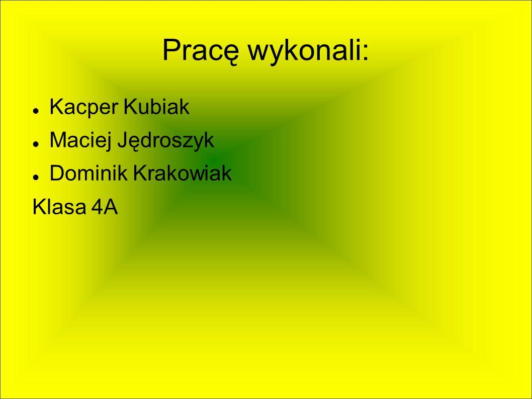 Bibliografia: Google.pl Wikipedia.pl http://www.spwierzonka.pl/ http://www.wierzenica.org/ http://www.dwor-wierzenica.pl/
