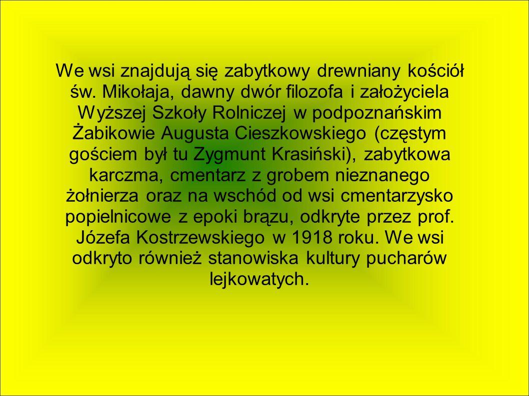 WIERZENICA Jest to wieś sołecka w województwie wielkopolskim, powiecie poznańskim, gminie Swarzędz, na prawym brzegu rzeki Głównej.