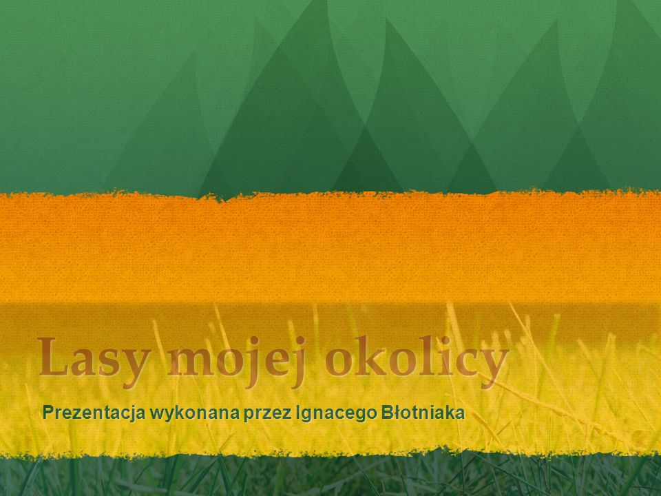 Lasy mojej okolicy Prezentacja wykonana przez Ignacego Błotniaka