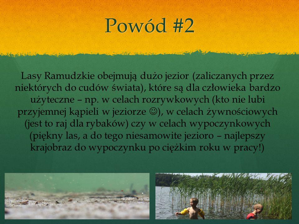 Lasy Ramudzkie obejmują dużo jezior (zaliczanych przez niektórych do cudów świata), które są dla człowieka bardzo użyteczne – np.