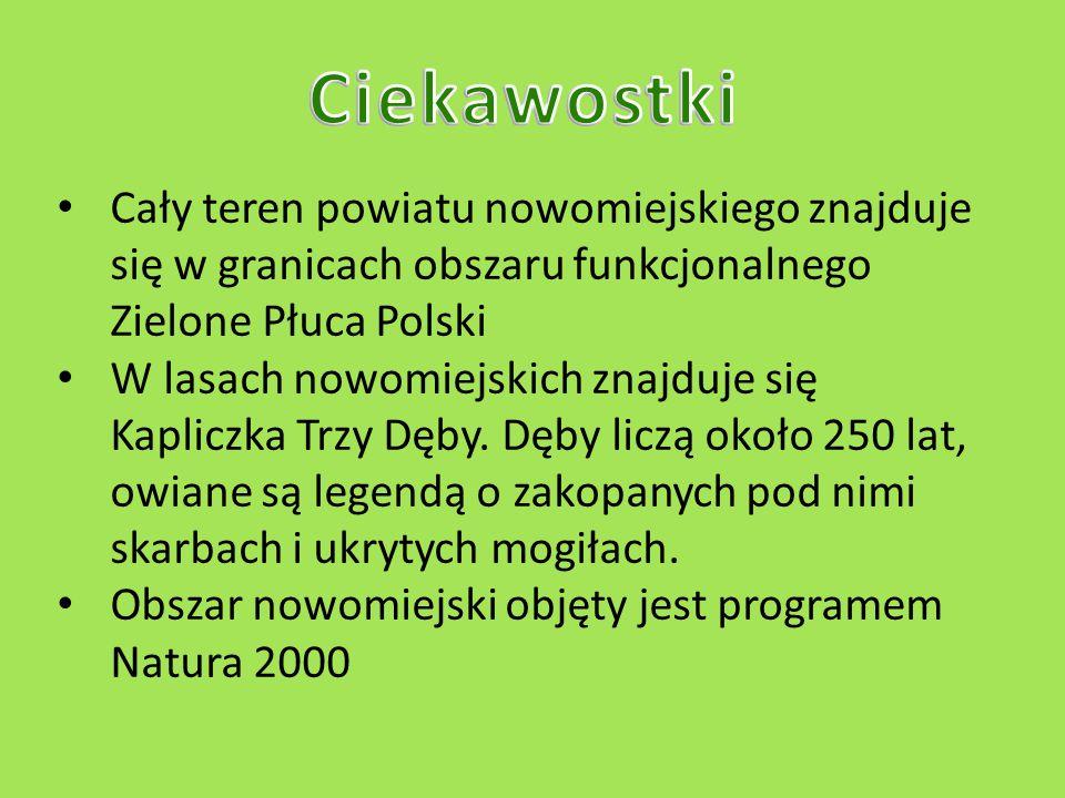 Przygotowała: Anna Klonowska