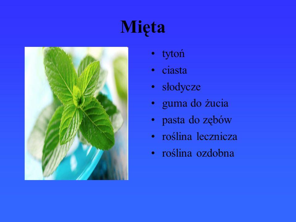 Rumianek pospolity olejek rumiankowy toniki odżywki kremy do płukania gardła na bóle brzucha herbata rumiankowa w leczeniu hemoroidów