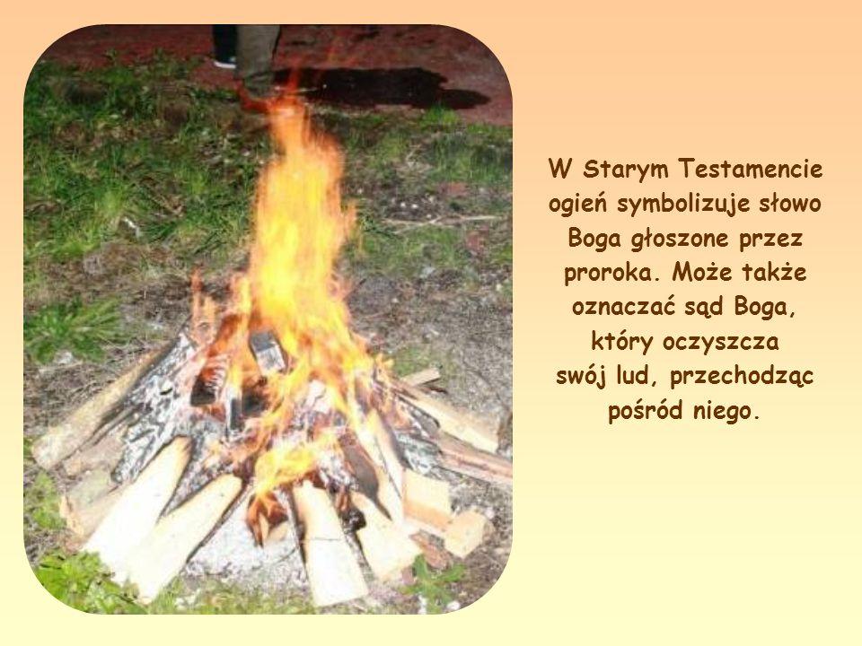 «Przyszedłem ogień rzucić na ziemię i jakże pragnę, ażeby już zapłonął» (Łk 12,49).