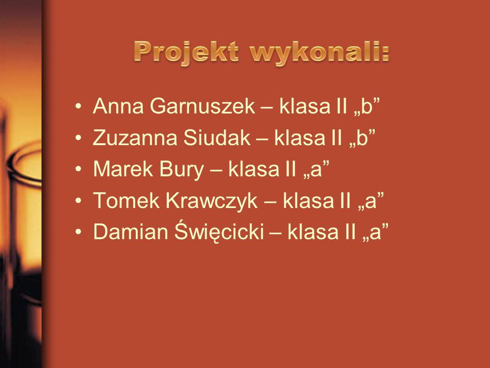 "Anna Garnuszek – klasa II ""b"" Zuzanna Siudak – klasa II ""b"" Marek Bury – klasa II ""a"" Tomek Krawczyk – klasa II ""a"" Damian Święcicki – klasa II ""a"""