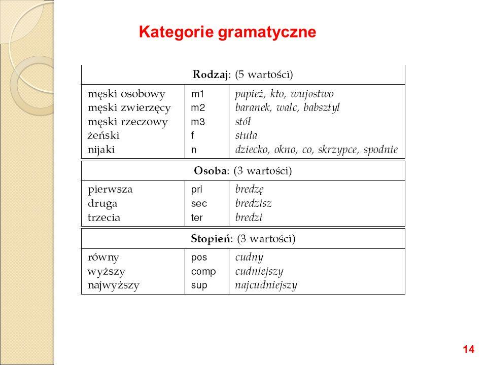 Kategorie gramatyczne 14