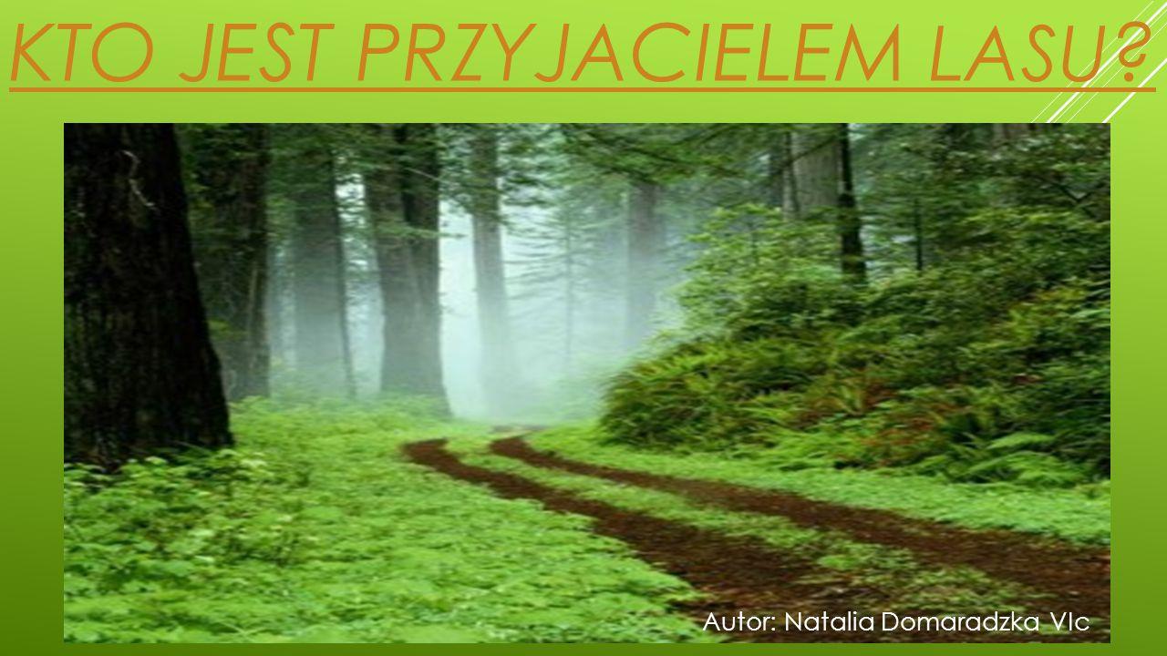 LEŚNIK  Leśnik jest gospodarzem lasu.To osoba, która najlepiej go zna.
