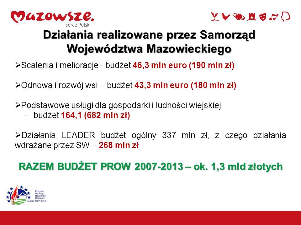  Scalenia i melioracje - budżet 46,3 mln euro (190 mln zł)  Odnowa i rozwój wsi - budżet 43,3 mln euro (180 mln zł)  Podstawowe usługi dla gospodarki i ludności wiejskiej - budżet 164,1 (682 mln zł)  Działania LEADER budżet ogólny 337 mln zł, z czego działania wdrażane przez SW – 268 mln zł RAZEM BUDŻET PROW 2007-2013 – ok.